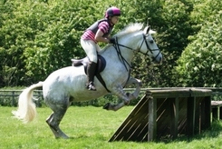 Personal Injury Compensation Won For A Serious Horse Riding Accident